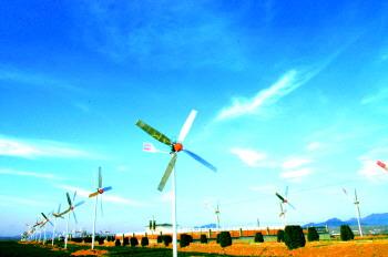 本报记者 李 梦    黄三角高效生态经济区与山东半岛蓝色经济