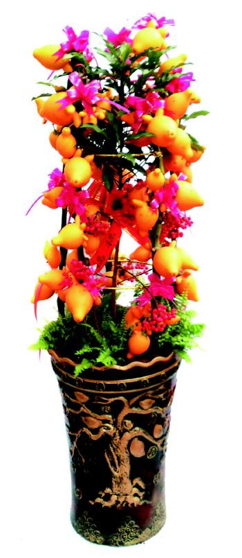 沙莎   鲜花绽放露新颜,万物始更换新貌。充满喜气的年花越来越成为年货中必不可少的重要角色。究竟什么样的花适合做办公区域和家庭装饰的年花呢?每一种年花又有怎样的美好寓意呢? 黄金年花吉祥黄金果   又称发财果,树身挂满金黄的果实。适宜生长在温暖湿润,阳光充足的环境。黄金果看上去一片金黄,由于其锦簇的外形,给人一种一团和气、温暖祥和的感觉。适合摆在会客的厅堂中,不用主人说话,就能有一种很温暖亲切的感觉。 富贵年花金钱树   富贵竹又称龙凤木,1999年昆明世博会上,人们还不清楚其姓啥名