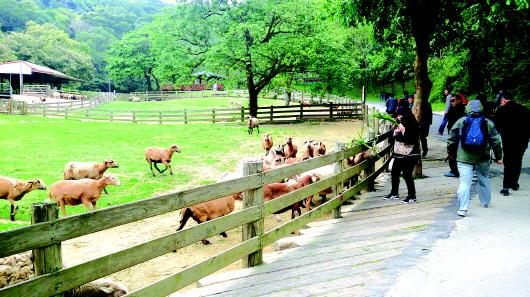 新加坡动物园导览图