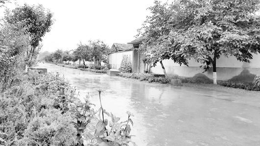 从大尧村的石头房村落到