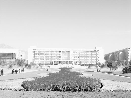 山东农业大学欢迎您
