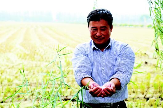 本报记者 姜国乐 赵德鑫     本报通讯员 赵 磊 乔志宇   王鲁镇,是鱼台县知名的水稻产地,三秋时节,行驶在乡间的道路上,路旁随处可见的是农户晾晒的湿稻谷与打好捆儿排列在剥壳机旁的水稻。   今年风调雨顺,水稻产量高,而且出米率也高,农民有了一个好收成。看着已经收割完毕的稻谷,王鲁镇王鲁村党支部书记王启龙向记者介绍。每亩地可以收稻谷12001300斤,一斤干稻谷能出7两半大米,但即使是在这样丰收的年份,一亩地算上种小麦的收入农民也只能挣到1000块钱。   为了避免这样的困境,王启龙