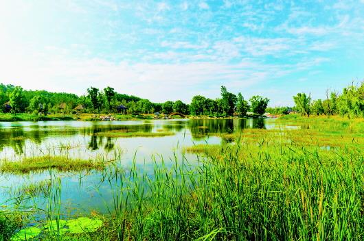 青州:资源带动型的全域旅游发展实践 - 平阴玫瑰甲天下 - 我心永恒博客乐园 平阴玫瑰甲天下