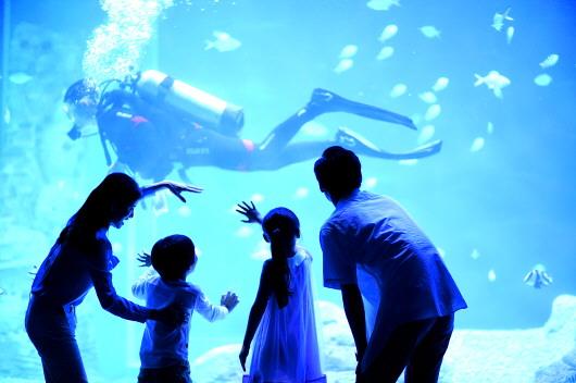 对海洋动物和陆生动植物进行综合展示.