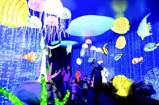 """下参观香港海洋公园""""华丽圣诞灯海""""的""""海洋奇观""""区"""
