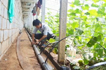蔬菜大棚滴灌设备_大棚安装滴灌设备好-农村大众数字报