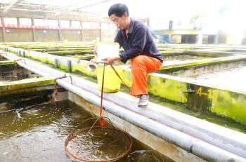 对虾工厂化循环养殖基地