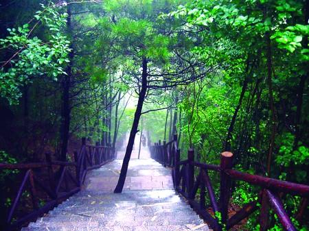 灵山大道早上风景图